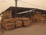 Neva gyo'dan adanayolu üzeri odun ambarında satılık arsa acil